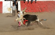 Bullfight in Peru - photo by Kirsten Koza
