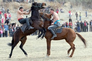 Writer's Expeditions - Kyrgyz horse games - photo provided by Travel Experts, Kyrgyzstan