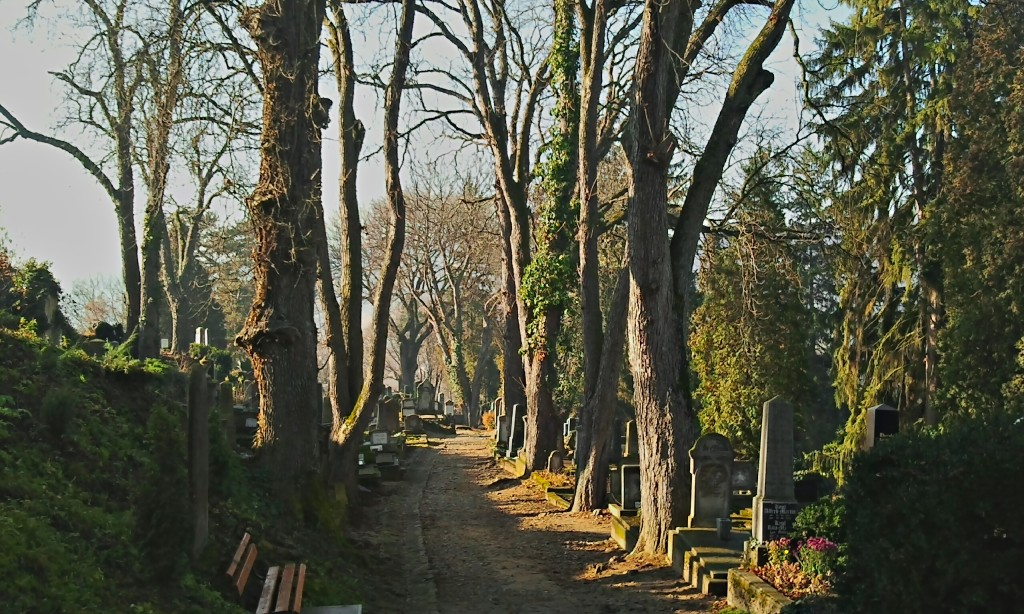 Our guide will take us to his favourite local haunts and moody cemeteries (Writers' Expeditions)