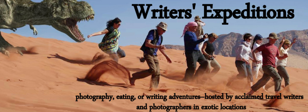 Writers Ex dino with text Facebook cover image