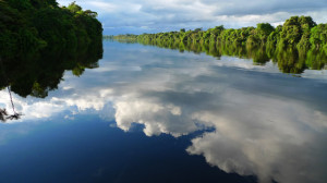 Photo: by Dawn on the Amazon, Nanay River