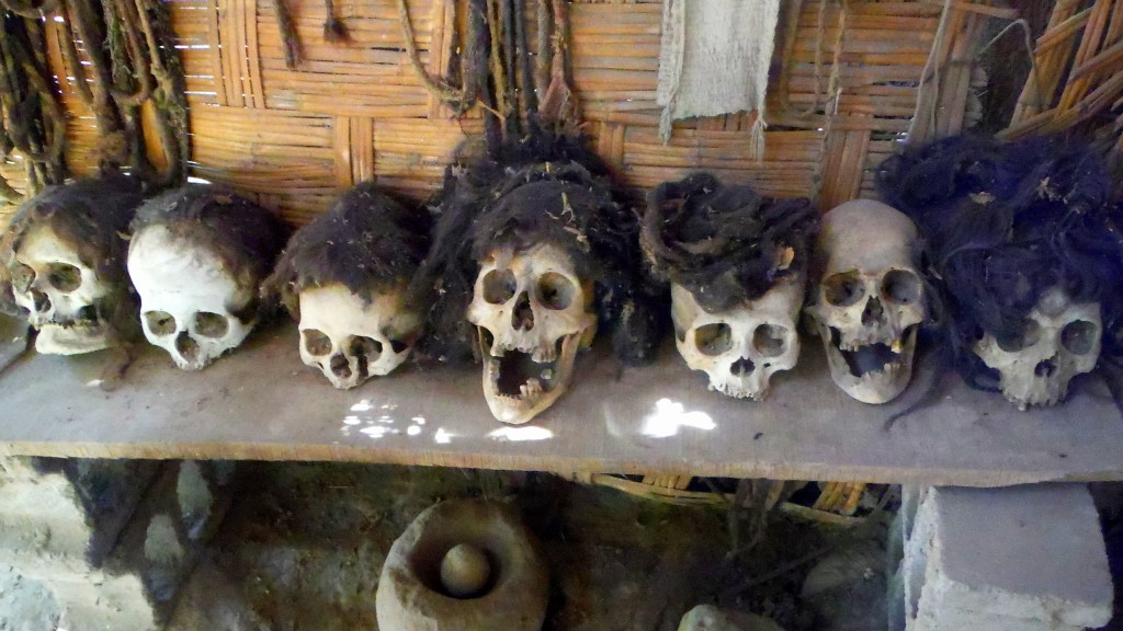 2,000 year old Nazca skulls in Peruvian garden shed. (Photo by Kirsten Koza)