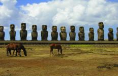 Easter Island, horses and moai (photo by Kirsten Koza)