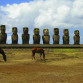 Easter Island, horses and moai (photo by Kirsten Koza)