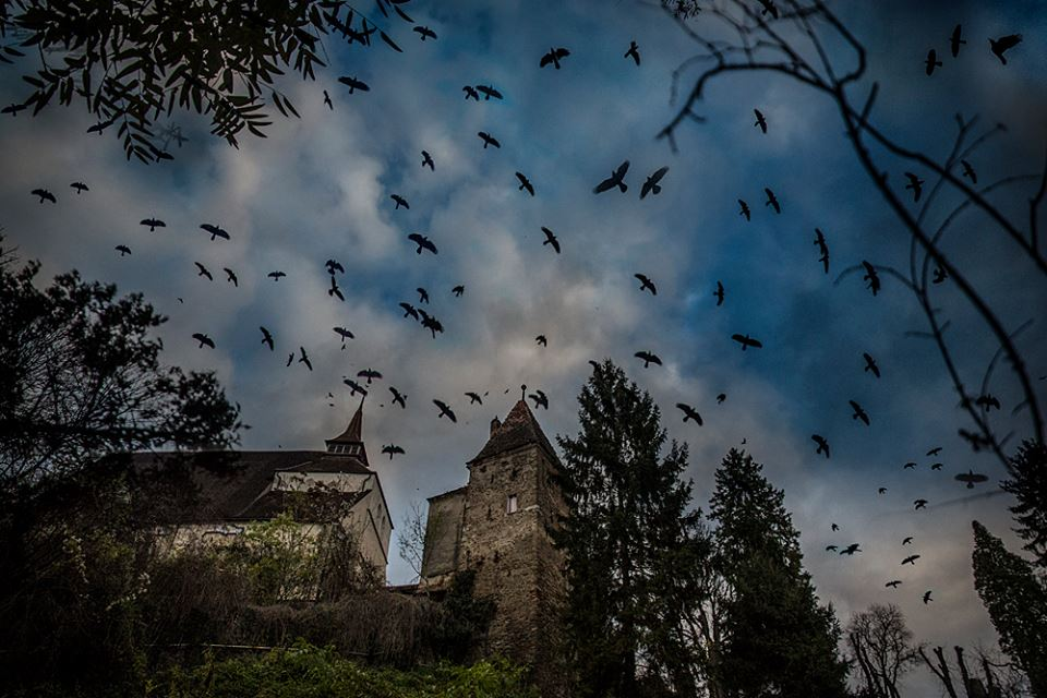 When we entered the cemetery in Sighisoara (the birthplace of Vlad Dracula) we were greeted by an Alfred Hitchcock sky. (Photo by Writers' Expeditions's photography host Christopher Campbell).