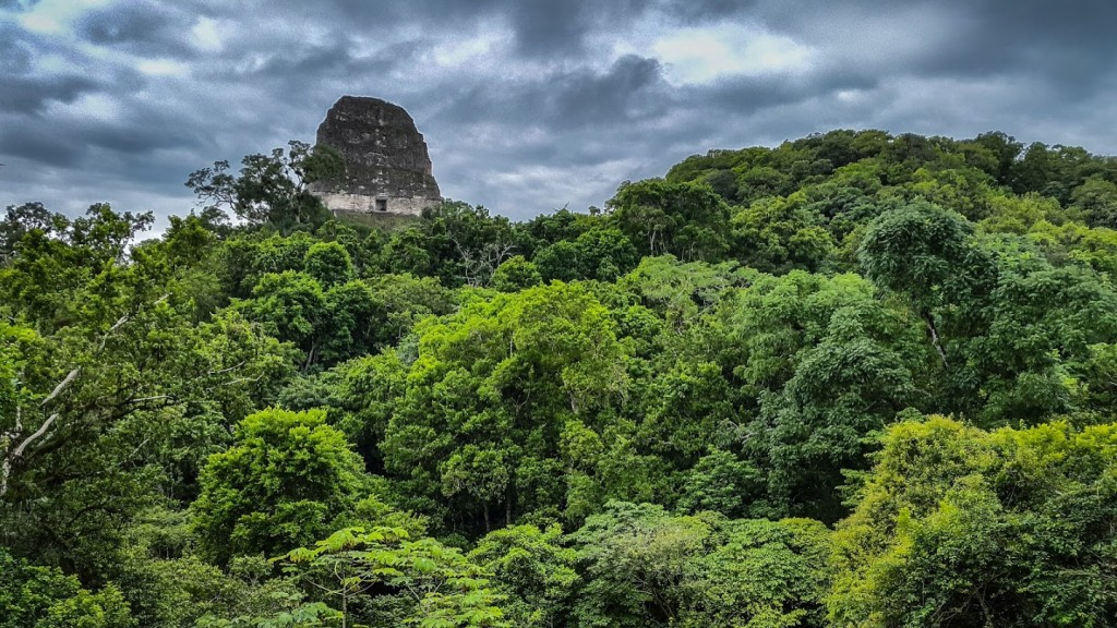 The ruins of Tikal (a UNESCO World Heritage Site), set in a rainforest, date back in range from 4th Century BC to 900 AD. (photo by Juliana Skaggs)